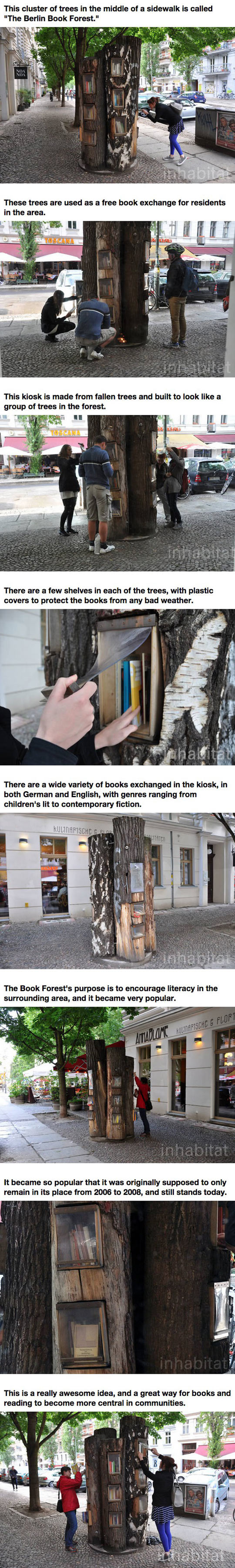 funny-Berlin-book-forest-Germany