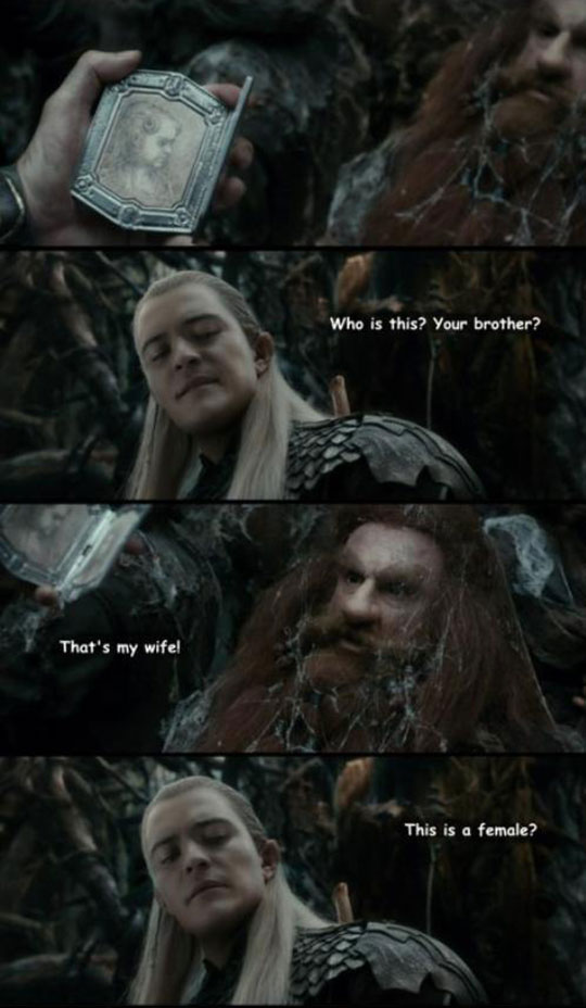 The Elves And Dwarves Conundrum