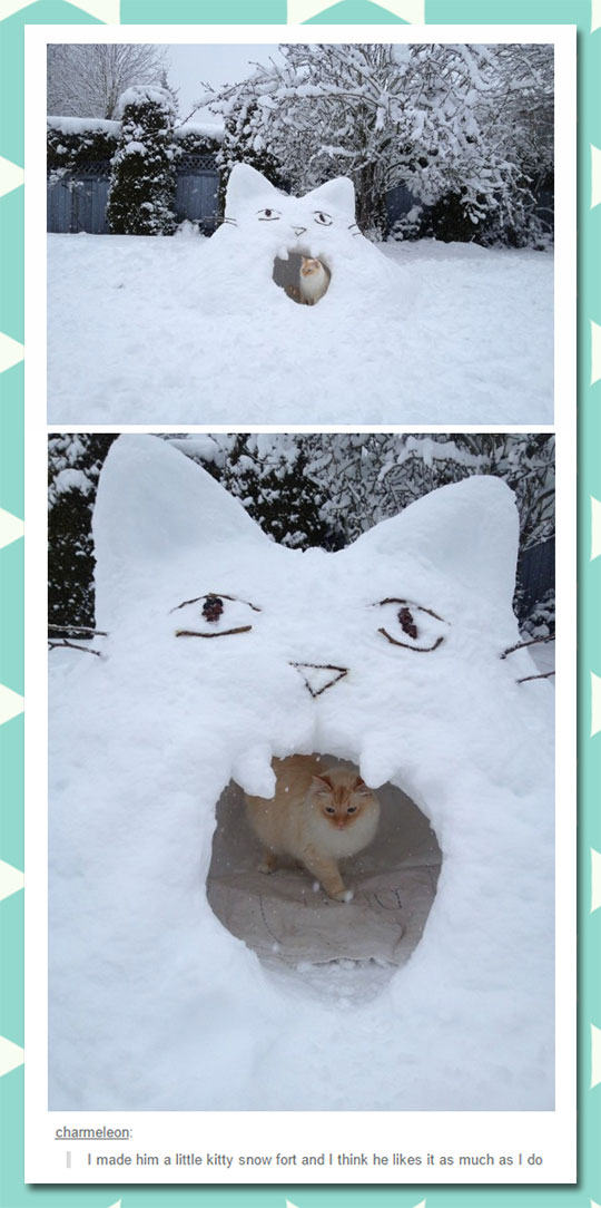 Kitty Snow Fort