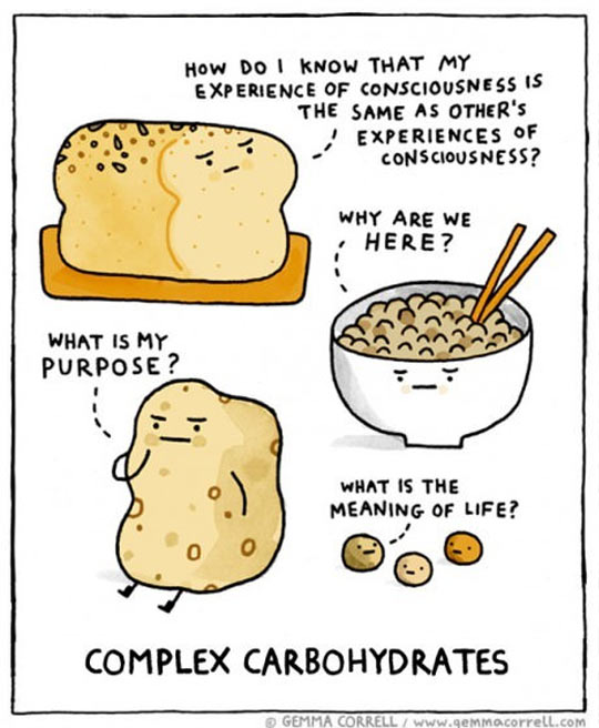 funny-complex-carbohydrates-thoughts-bread