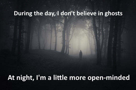 funny-day-ghost-wood-fog-scary
