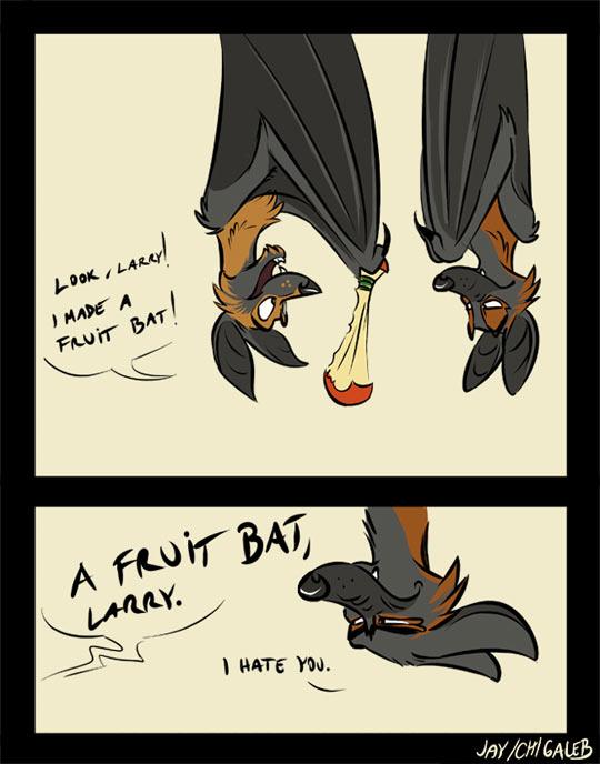 Fruit Bats Pun