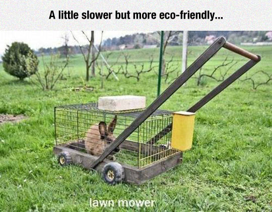 The Green Solution For Lawnmower