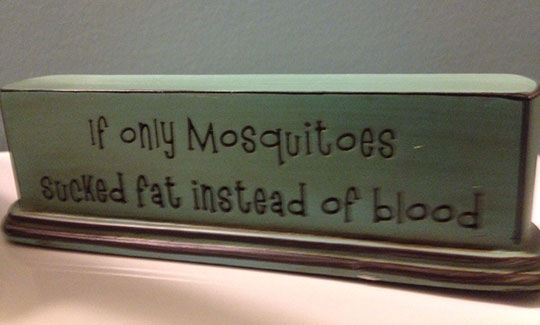 funny-mosquitoes-fat-blood