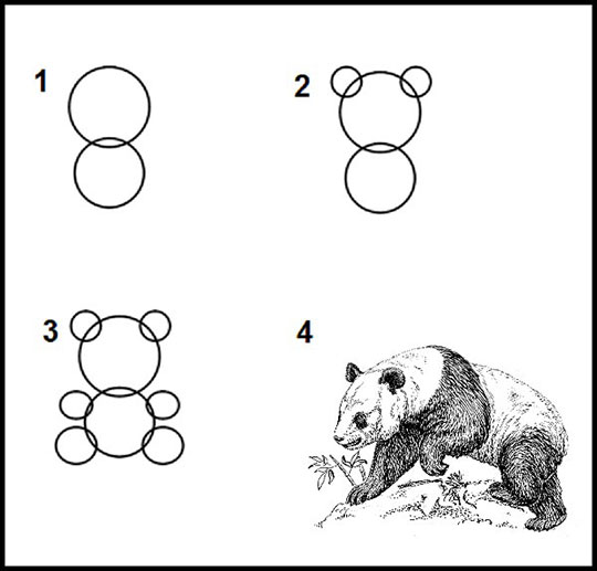 How To Draw A Panda In Every Art Tutorial