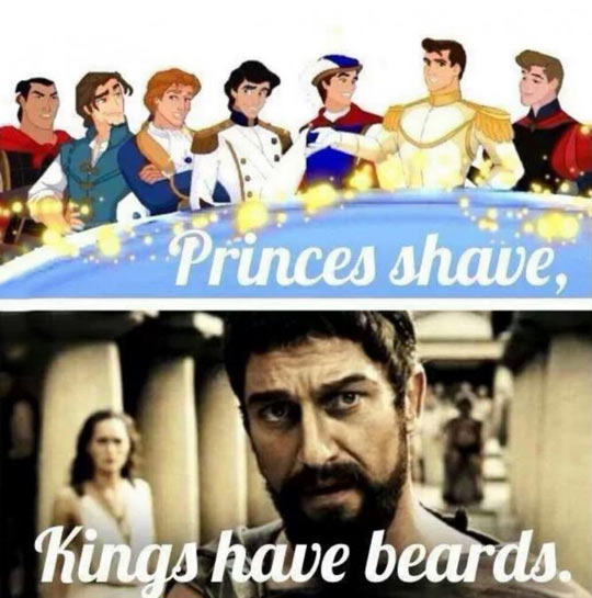 Princes Are Beautiful And Kings Are Manly