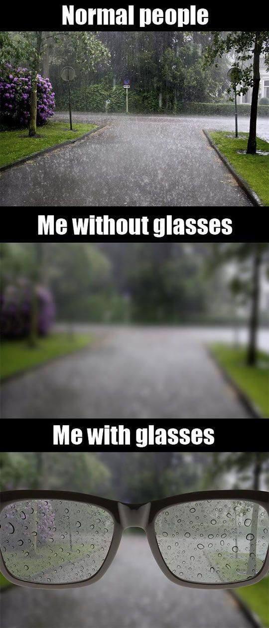 funny-wearing-glasses-rain-street