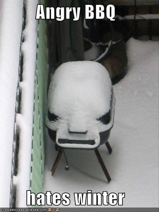 funny-winter-pictures-17
