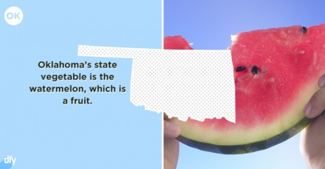 Embarrassing-State-Facts-36-685x356