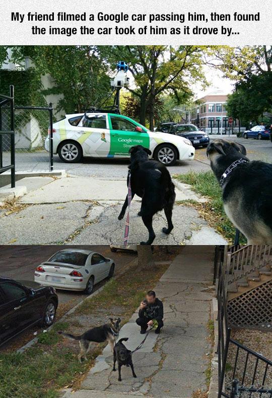 cool-Google-car-photograph-Street-View