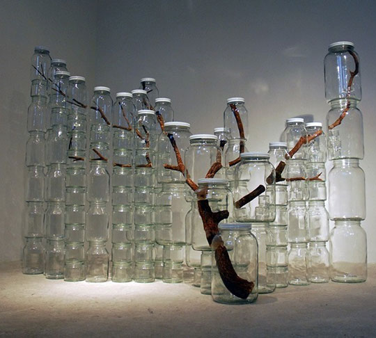 cool-art-branch-jars-trapped