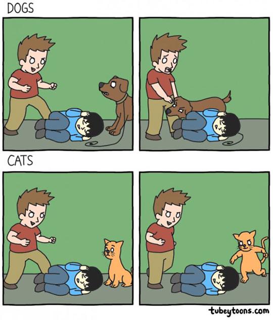 cool-cartoon-dog-cat-fighting-defense