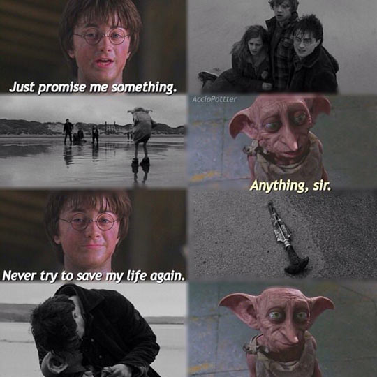 Dobby Couldn