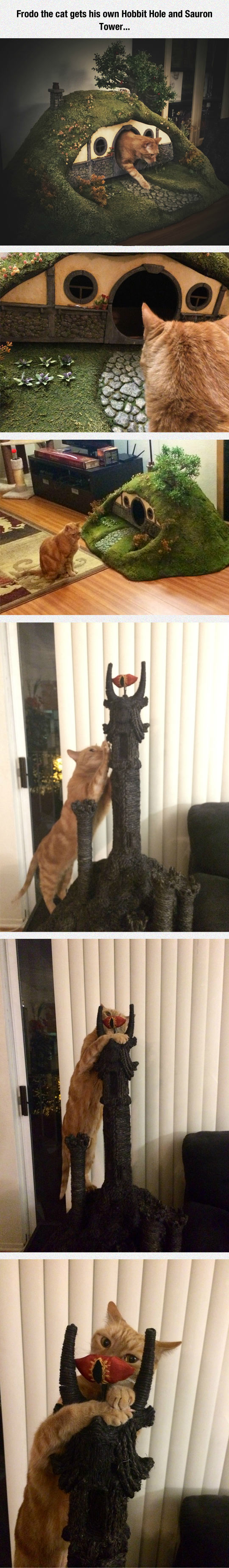 funny-Hobbit-hole-Sauron-tower-cat