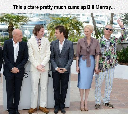 funny-Moonrise-Kingdom-casting-Bill-Murray