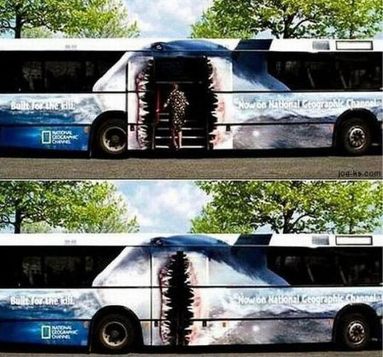 funny-National-Geographic-shark-bus-ad