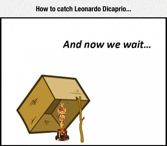 funny-Oscar-box-trap-Leo-DiCaprio