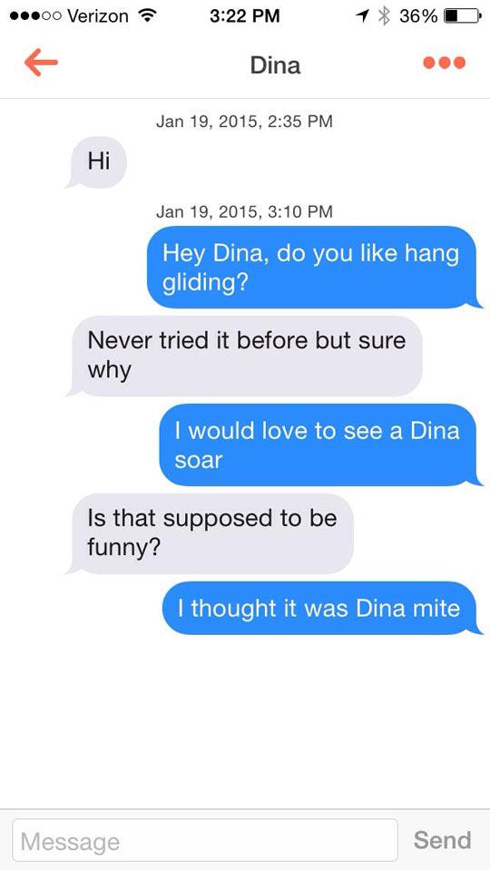 funny-Tinder-conversation-Dina-soar