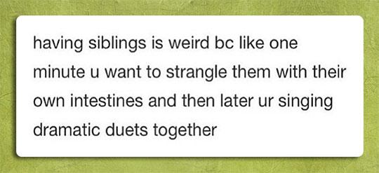 Having Siblings