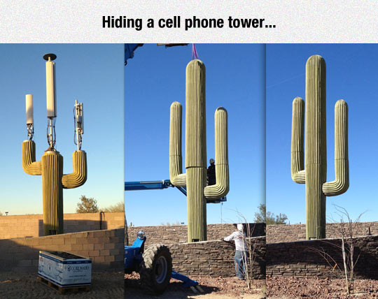 funny-cactus-cell-phone-tower-hid