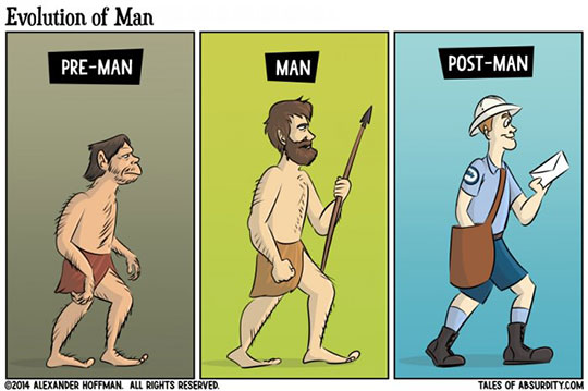 The Stages Of Evolution