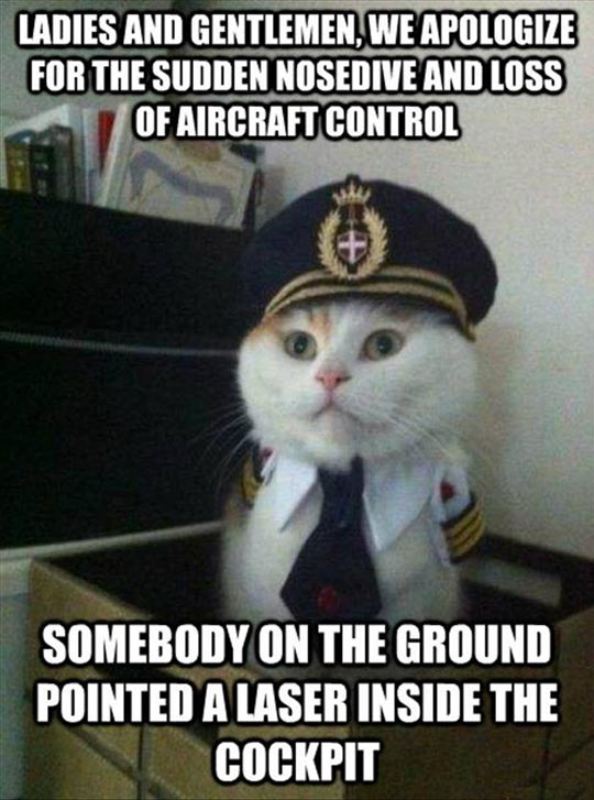 funny-cat-airplane-captain-hat-suit