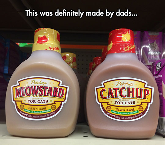 funny-cat-condiment-mustard-ketchup