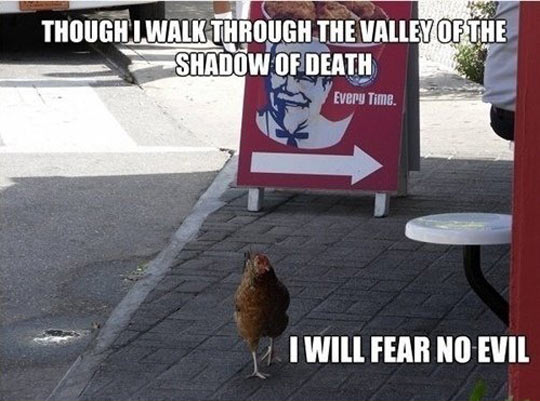 Fried Chicken Funny Quotes: Bravest Chicken Ever