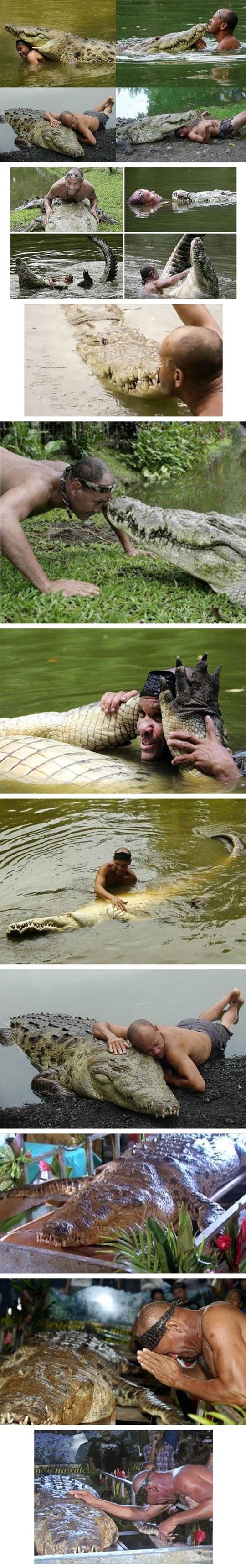 Poncho, The Friendly Crocodile