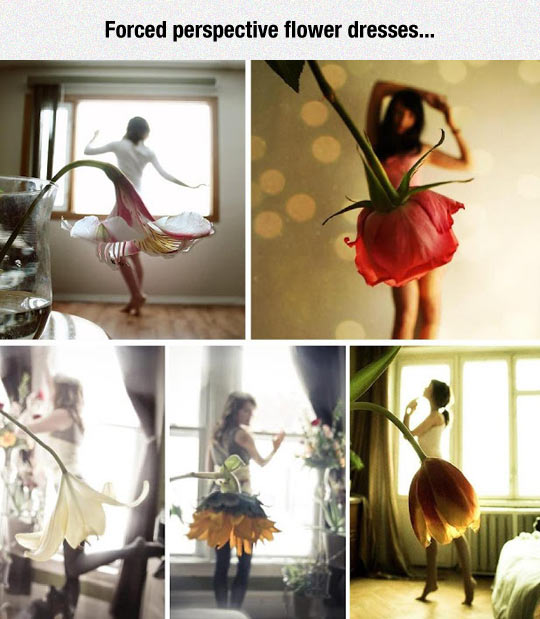 funny-forced-perspective-flower-dresses
