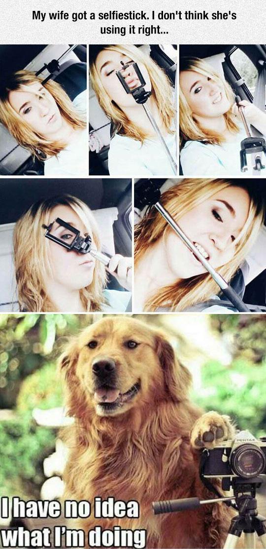 funny-girl-selfie-stick-dog-confused