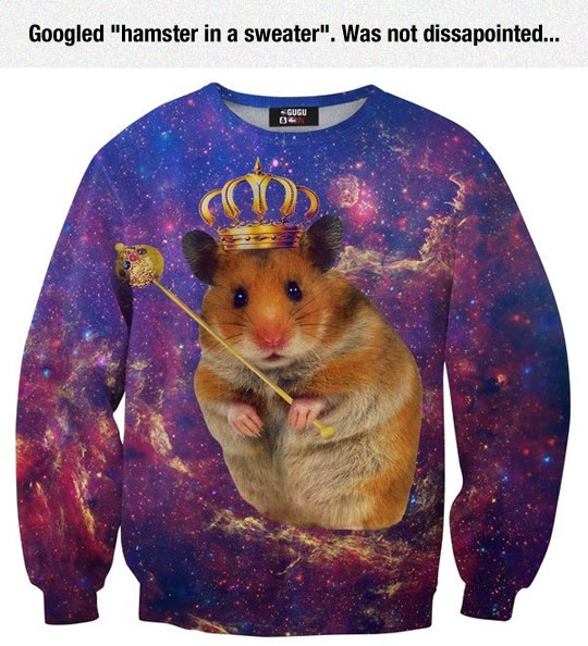 funny-hamster-sweater-king-crown-cosmos