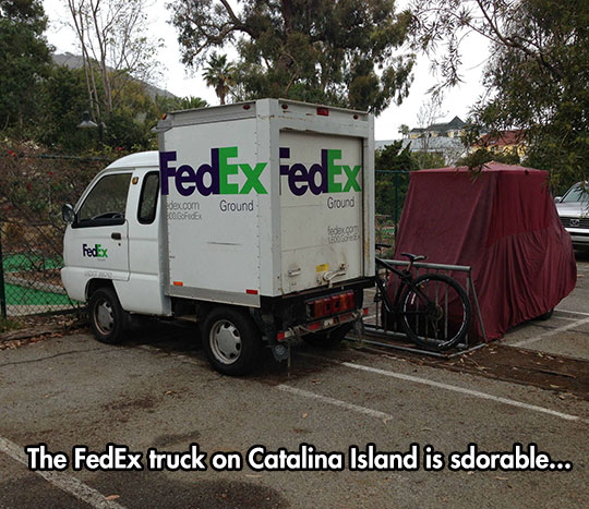 funny-little-FedEx-truck-parked
