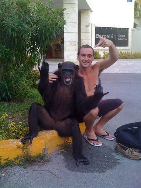 funny-monkey-posing-picture-finger