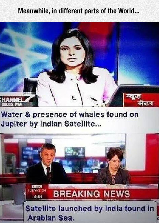 funny-news-title-whales-Indian-Satellite