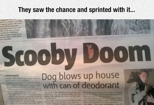 The Editor Is A Clever Guy