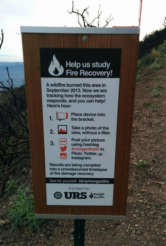funny-sign-fire-wood-recovery-help-picture