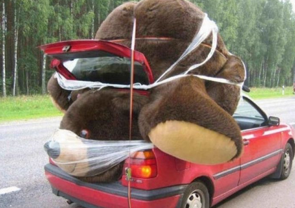 strange-things-seen-while-driving-20