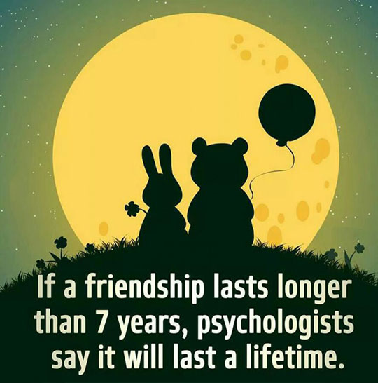 How Many Lifetime Friends Do You Have?