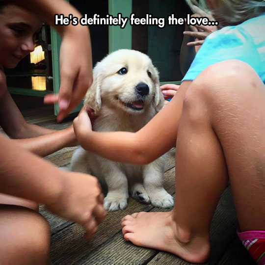 Really Feeling The Love