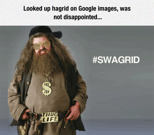 Hagrid Looks Good