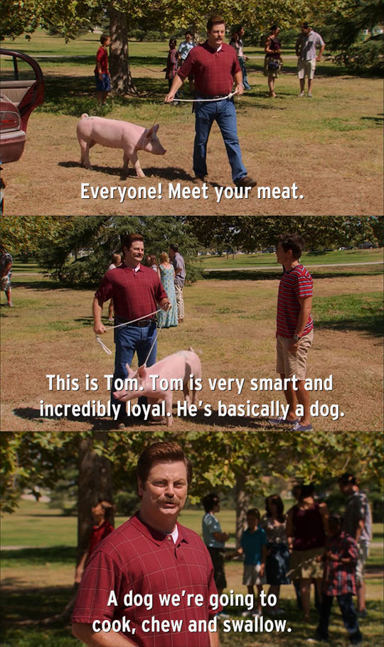 funny-Ron-Swanson-pig-meat