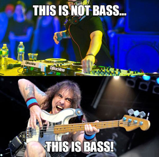 funny-Skrillex-bass-player-DJ