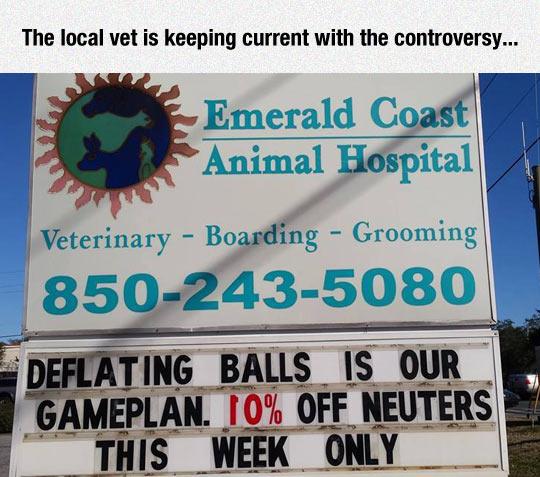 funny-animal-hospital-sign-plan