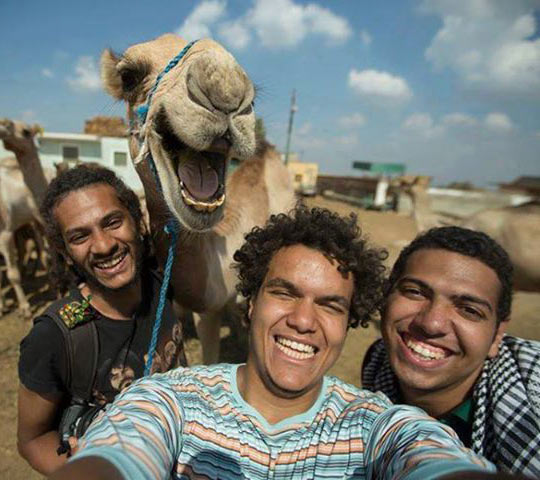 funny-camel-selfie-friends-desert