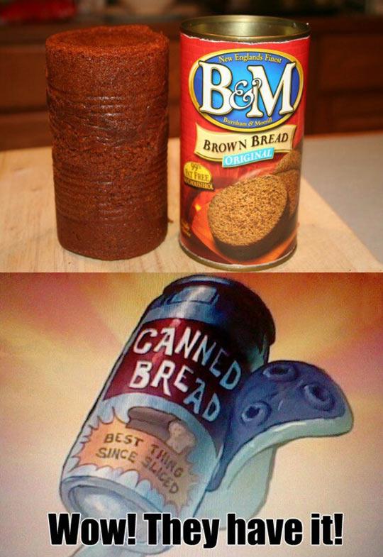 funny-canned-brown-bread-SpongeBob