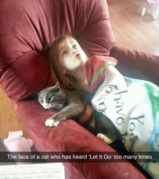 funny-girl-hugging-cat-couch