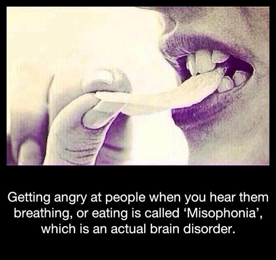 funny-misophonia-hear-people-breathing-eating