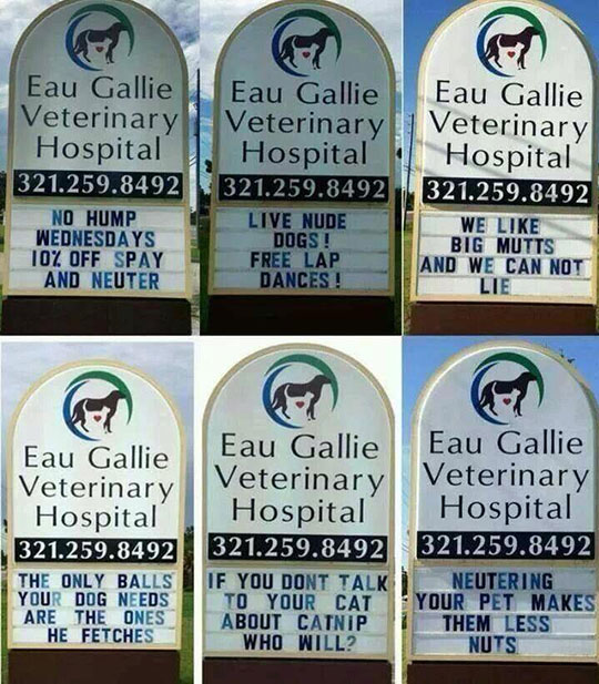 The Vet Marquee Is Clever