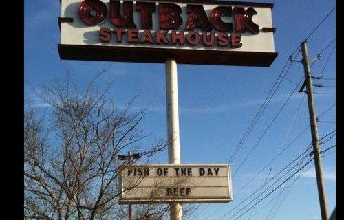 ironic-fish-ofthe-day